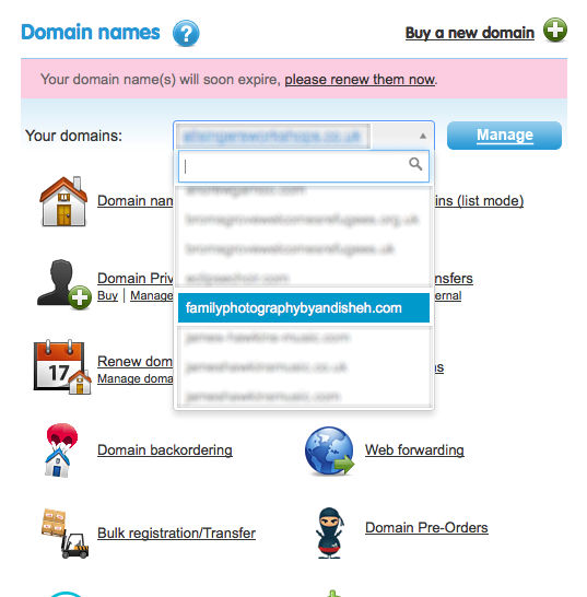 Select Domain To Manage on 123 reg
